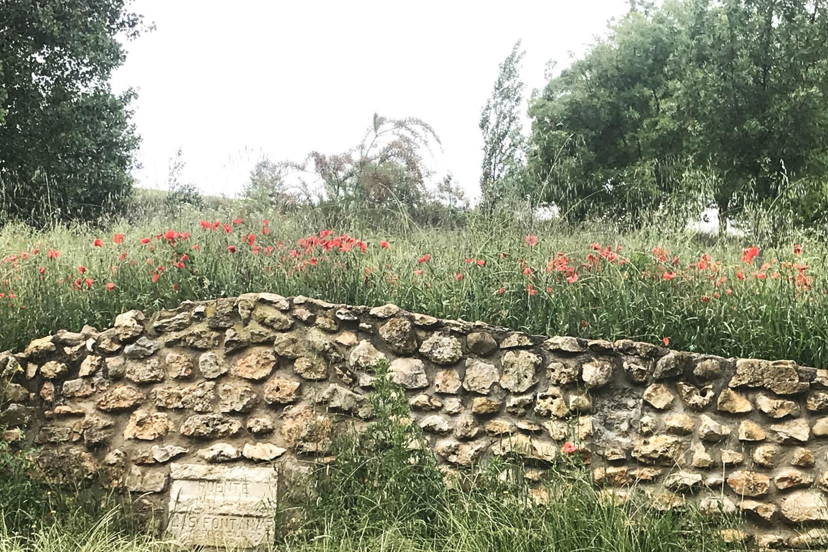 Las Fontanas y Retuerta